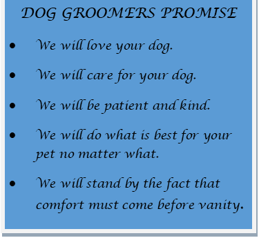 Dog Groomers Promise